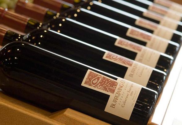 Burrowing-Owl-wines