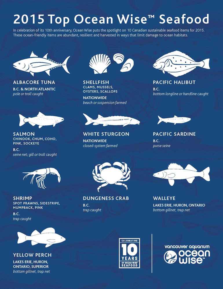 Ocean wise turns 10 releases 2015 top 10 list of for Most sustainable fish
