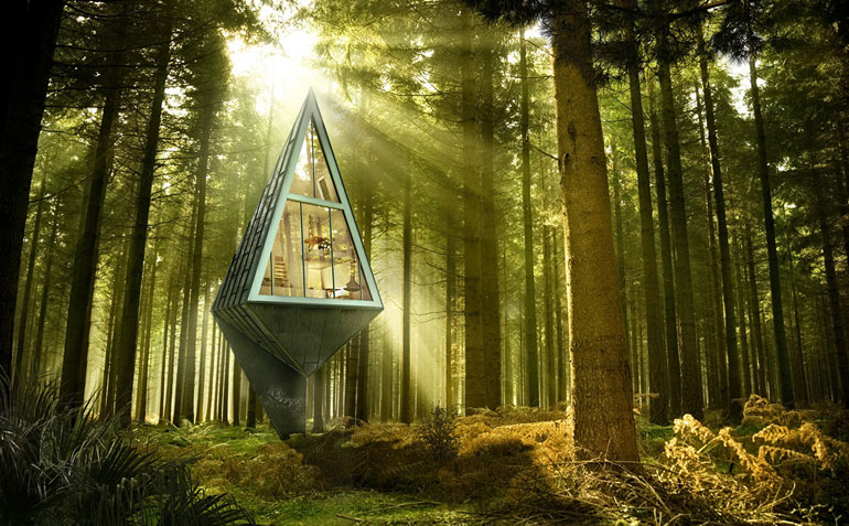 COOL THING WE WANT #474   A Tree-Shaped Escape Tucked Away Somewhere In The Wilds