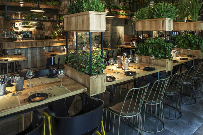 Dig This Israeli Eatery With Live Herbs Dressing Its Walls