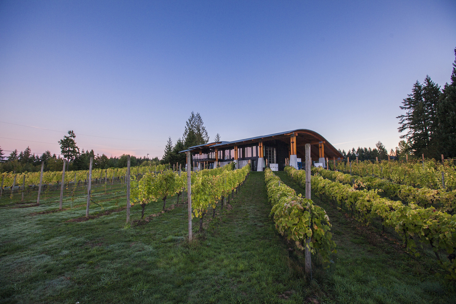 Blue Grouse Estate Winery And Vineyard Scout Magazine