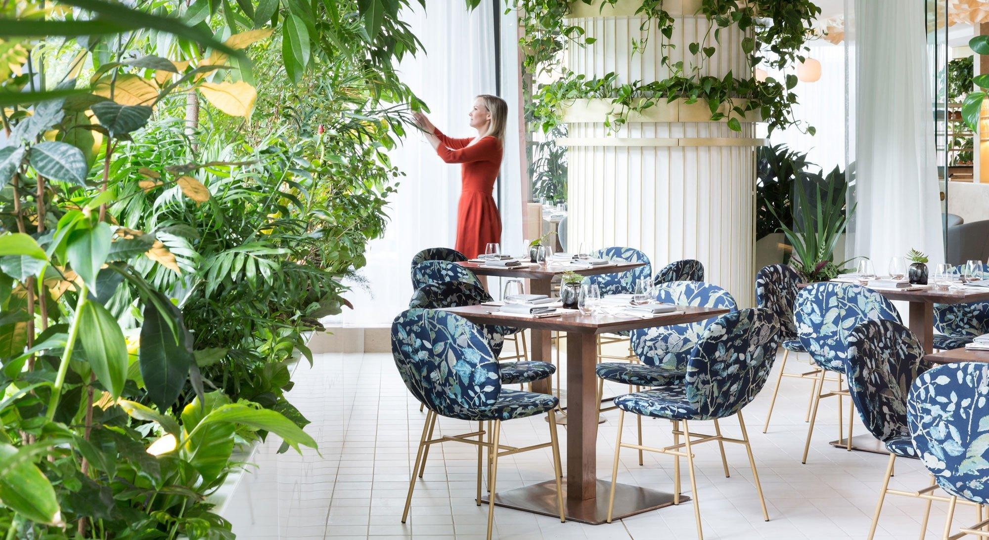 Botanist on Hunt for General Manager
